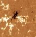 Campos magnéticos solares