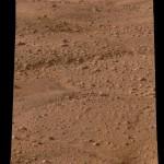 Imagen de Marte tomada por la sonda Phoenix