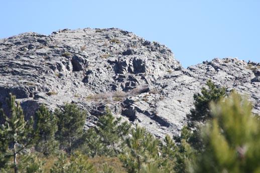 Rocas...