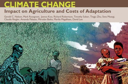 Relación entre cambio climático y hambre