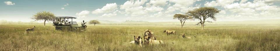 Durban COP17