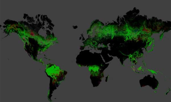 Mapa de deforestación